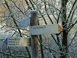 Wanderung zur Ruine Hammerstein