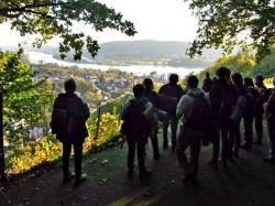 Tao des Wanderns im Siebengebirge am Rhein