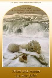 Neujahrsgrusskarte Muscheln am Strand im Schnee