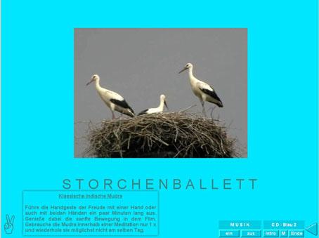 Beispiel-Seite aus der Video-Meditation Rügen: Störche im Storchennest