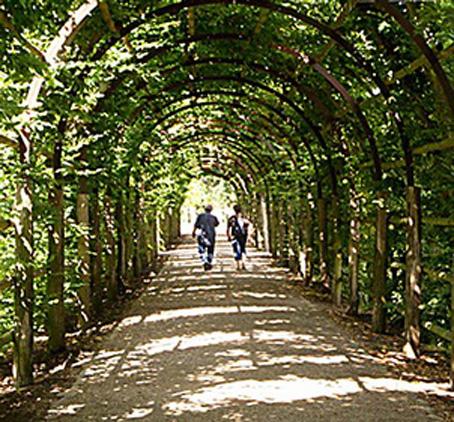 Spalier im Grünen mit zwei Spaziergängern zum Meditieren