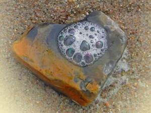 Donnerkeil mit Bernsteinfarbe und schönem Wassertropfen am Sandstrand der Ostseeküste