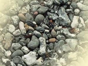 Feuersteine und Hühnergötter in verschiedenen Farben und Formen auf der Insel Rügen.