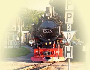 Lokomotive der historischen Schmalspurbahn Rasender Roland auf der Insel Rügen - am Bahnübergang mit Schiene