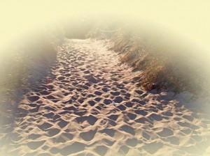 Strandzugang im Sonnenlicht mit feinem Sand und Düne auf der Insel Rügen.