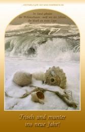 Neujahrsgruß mit Meereswellen im Winter, Muscheln, Strand und entspannender Haiku-Lyrik