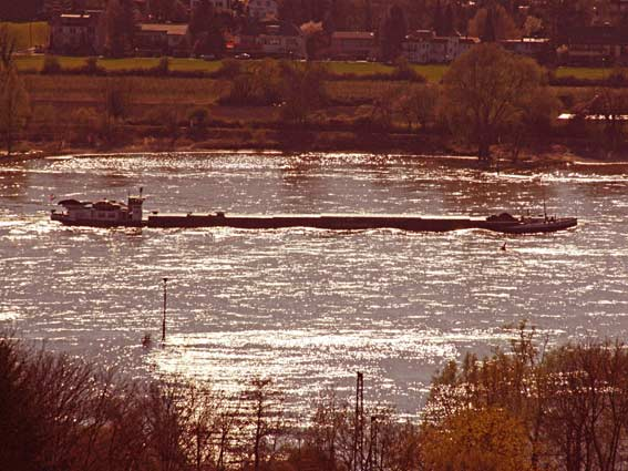 Blick auf den Rhein zwischen Köln und Koblenz - silbernglitzerndes Wasser