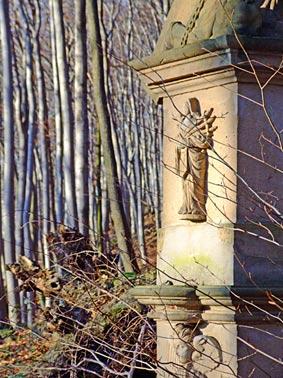 Bittweg am Petersberg im Siebengebirge am Rhein - Tao des Wanderns