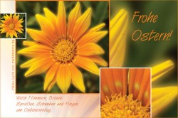 Oster-Glückwunschkarte mit gelber Ringelblume und Haiku-Gedicht / Lyrik, Frohe Ostern per E-Mail oder zum Ausdrucken!