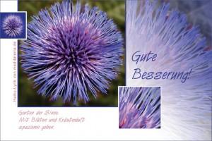 Glückwunsch für Gesundheit - Gute Besserung mit blauer Schnittlauchblüte und Haiku-Gedicht / Lyrik
