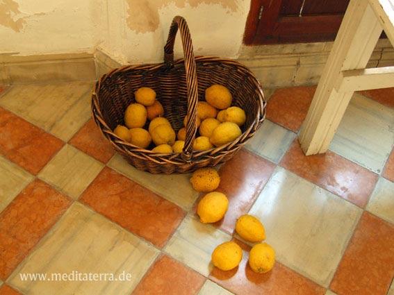 Weiß-terrafarben gekachelter Finca-Flur mit Zitronenkorb auf Mallorca