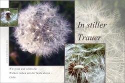 Trauerkarte - In stiller Trauer - mit verblühtem Löwenzahn / Pusteblume und Haiku-Gedicht