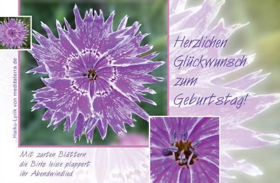 Geburtstagskarte mit lila Bluete und Haiku