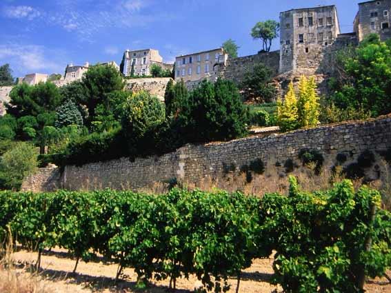 Luberon-Dorf Ménerbes in der Provence - auf einem Hügel mit Weinberg im Vordergrund