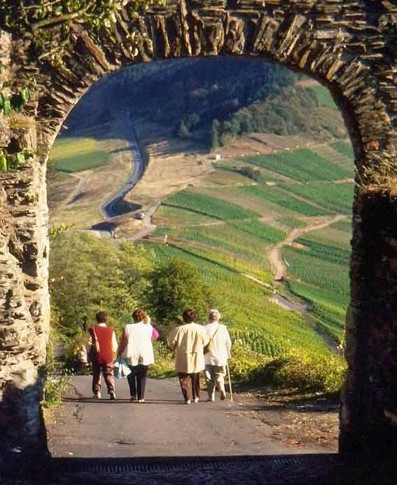 Vier Frauen bei einem Spaziergang in der Mosellandschaft mit Weinbergen und Burgeingang