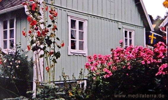 Grünes Holzhaus in Arild mit Blumen im Garten