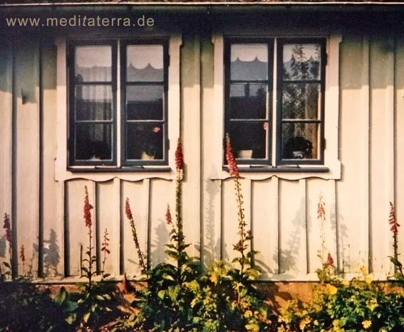 Beiges Holzhaus in Arild (Schweden) - verziere Fenster