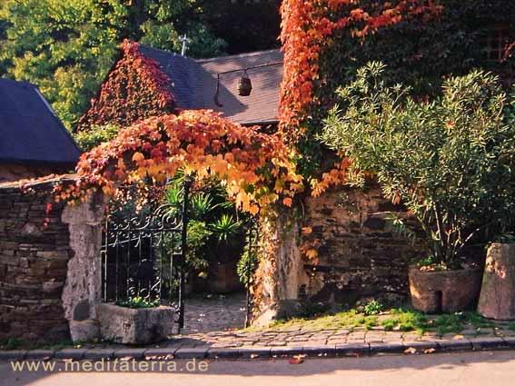 Herbstlicher Weinort an der Mosel