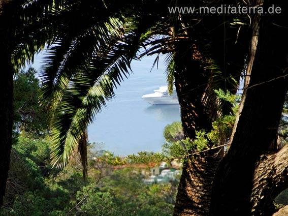Genusstraining: Genussmeditation AchtsamkeitPalme mit blauem Meer und Schiff
