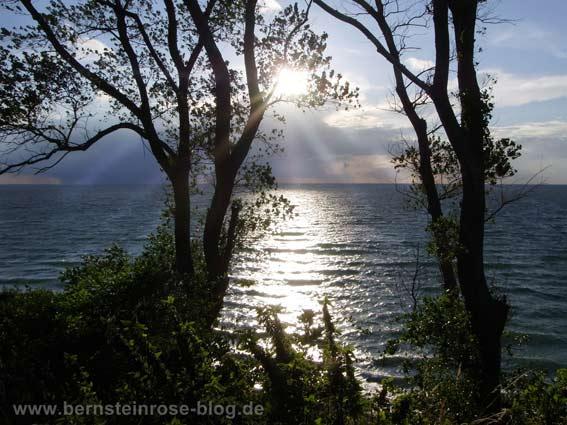 Abendstimmung am Meer mit Bäumen und silberner Sonne