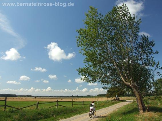 Himmelblaue Landschaft mit Radfahrerin - ich bin dann mal weg...