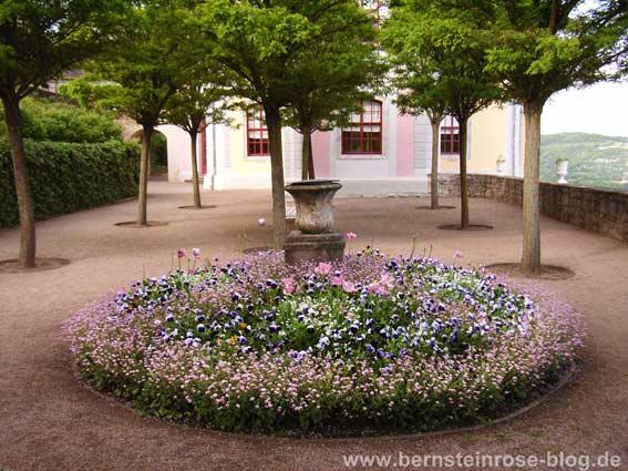 Blumenrondell im Schlossgart des mittleren Dornburger Schlosses