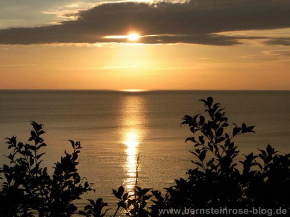 Glodenes Meer mit Silbertönen beim Sonnenuntergang - im vordergrund Sträucher