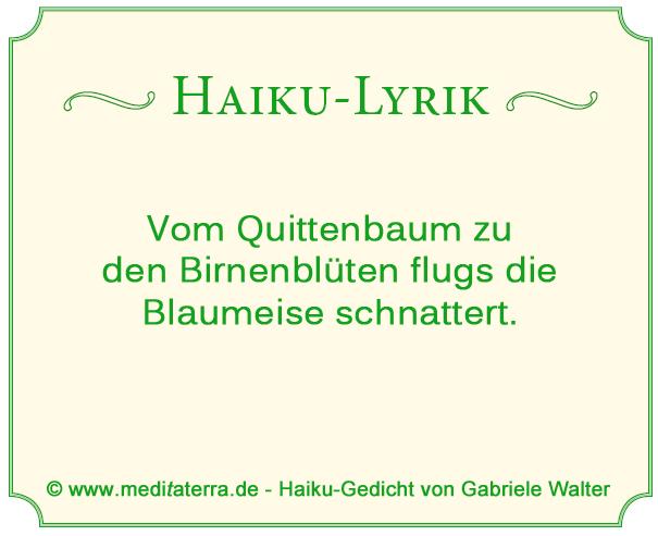 Haiku-Gedicht von Blaumeise und Quittenbaum, Birnenbaum.