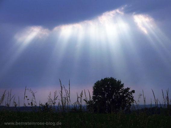 Graues Himmeltszelt mit Sonnenstrahlen und Wiesenlandschaft