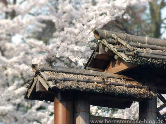 Japanischer Garten in Kaiserlautern: Baudetail mit Strohdach