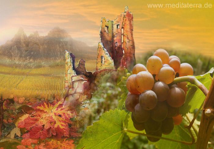 Drachenfels mit Weinbergen, Weintrauben und Weintraubenblättern - Collage aus Aquarell und Foto von Kurt Ries