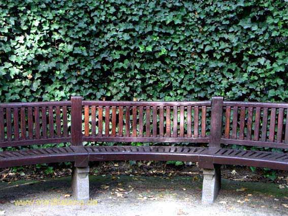 Gartenbank aus Holz mit Efeu