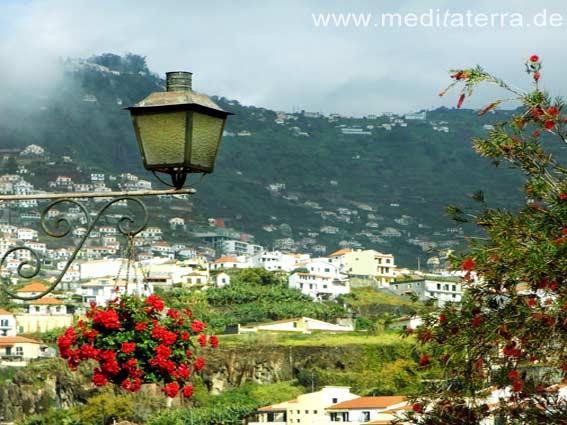 Madeira, Dorf, Camara de Lobos, Blumen, Laterne