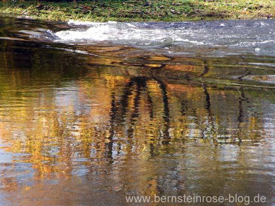 Fluß mit herbstlichem Spiegelbild, Bäume mit gelben Blättern, dahinter wasserstrudel