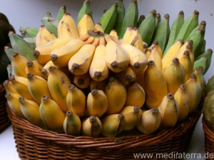 Madeira-Bananen in einem Korb - gelb und grün