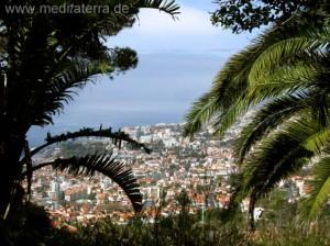 Mirador - Madeira - Blick auf Funchal
