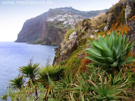 Madeira: Blick auf die Felsenküste bei Camara de Lobos