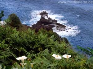 Mirador an der Nordküste Madeiras