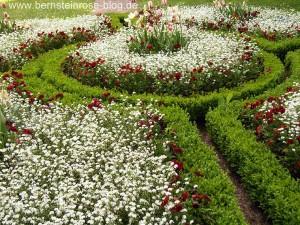 Frühlingsblumen im Rokokogarten der Dornburger Schlösser