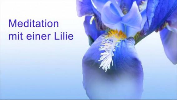 Geburtstagsvideo - Meditation mit einer blauen Schwertlilien - Videobild