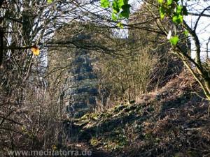 Ruine Hammerstein am Rhein - Aufstiegsweg im Winter