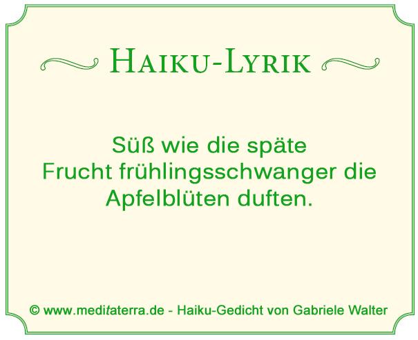 Haiku von Gabriele Walter, Apfelblütenduft, Frühling