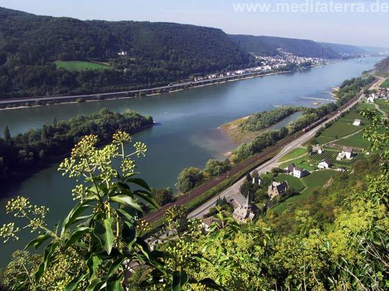 Blick von der Ruine Hammerstein auf Hammerstein und den Rhein