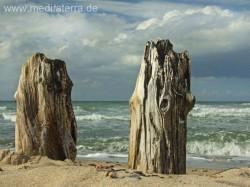Zwei hölzerne Buhnenpfähle am Strand mit Sonne, Wolken und Meeresschaum