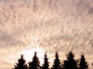 Himmel mit weißen Wolken und Tannen