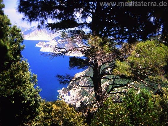 Blick von der Insel Skopelos nach Alonissos mit blauem Meer