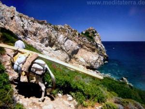 Wanderweg nach Kastro mit beladenem Esel auf der Insel Skiathos
