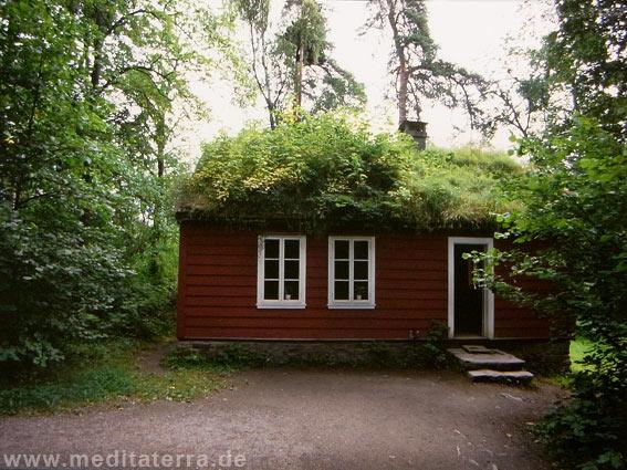 Kleines Holzhaus mit Gras und Farnen bewachsen
