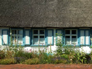 Reetdachhaus in Ostseenähe