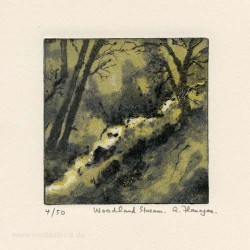 Aidan Flanagan 3, Ireland, Woodland Stream, Carborundum and Dry Point, 10 x 10 cm, 2015